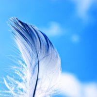 羽毛布団クリーニングの頻度は?汚れの原因とふだんの手入れの仕方