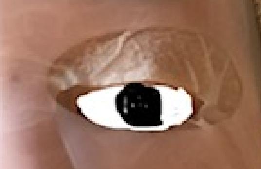 ダイソーシリコンマスク