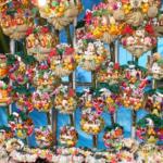 巣鴨大鳥神社の酉の市に行ってきた!人気の理由が分かった気がします