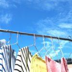 洗濯物に虫がつかない方法!虫除けや簡単にすぐできる対策