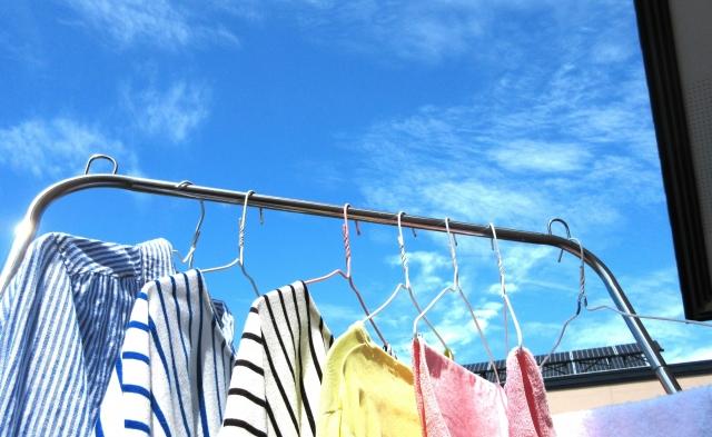 洗濯物に虫がつかない方法