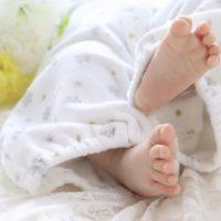 ハッカ油は赤ちゃんにも使える?虫除けの使い方と注意点【体験談】