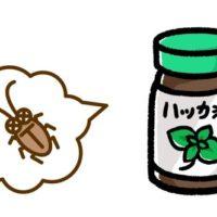 ハッカ油はゴキブリにも効果ある?虫除けのおすすめの使い方