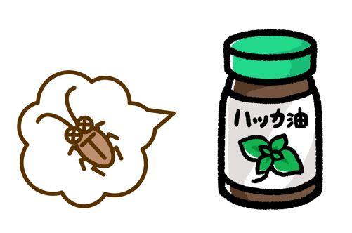 ハッカ油のゴキブリへの効果