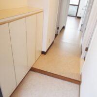 玄関の虫対策、アパートやマンションででききる最強の虫除け!
